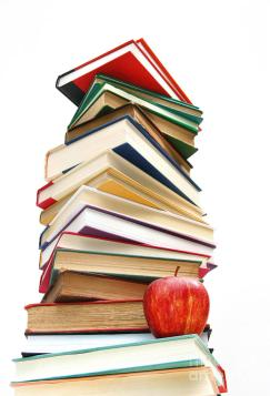 large-pile-of-books-isolated-on-white-sandra-cunningham